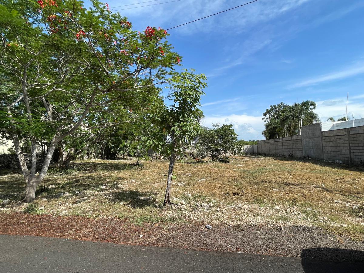 Foto Terreno en Venta en  Pueblo Dzitya,  Mérida  Terreno en privada residencial-Dzitya