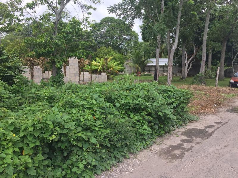 Foto Terreno en Venta en  Rancho o rancheria Ixtacomitan,  Villahermosa  Se vende Terreno en Ixtacomitan 5ta Sección