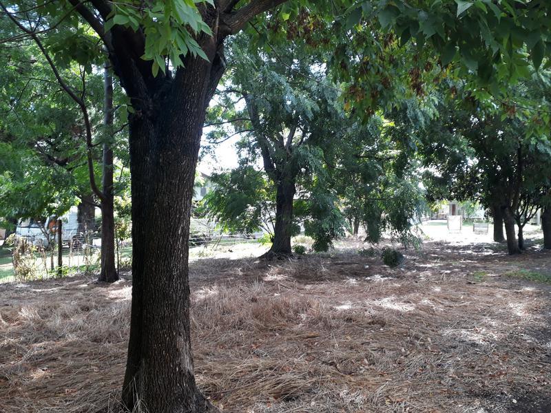 Foto Terreno en Venta en  Colonia del Sacramento ,  Colonia  OTAEGUI casi BALET