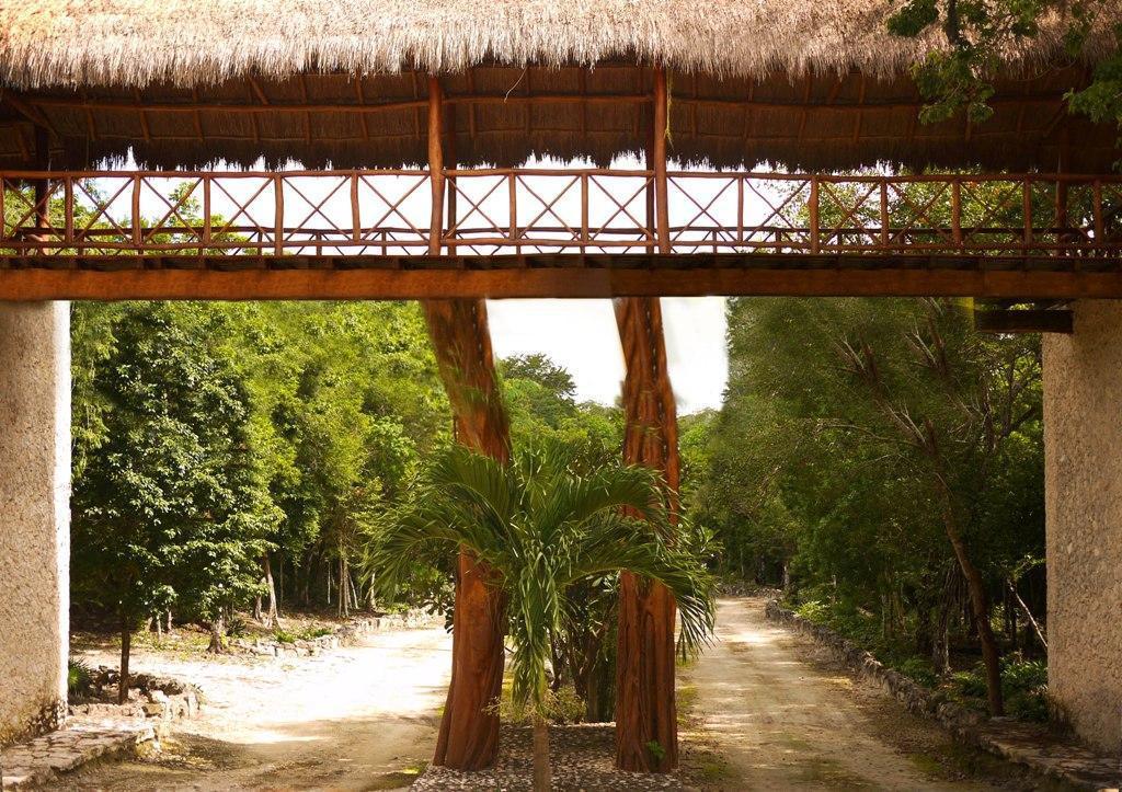 Foto Terreno en Venta en  Playa del Carmen,  Solidaridad  TERRENO EN VENTA ESCRITURADO 10 mil m2