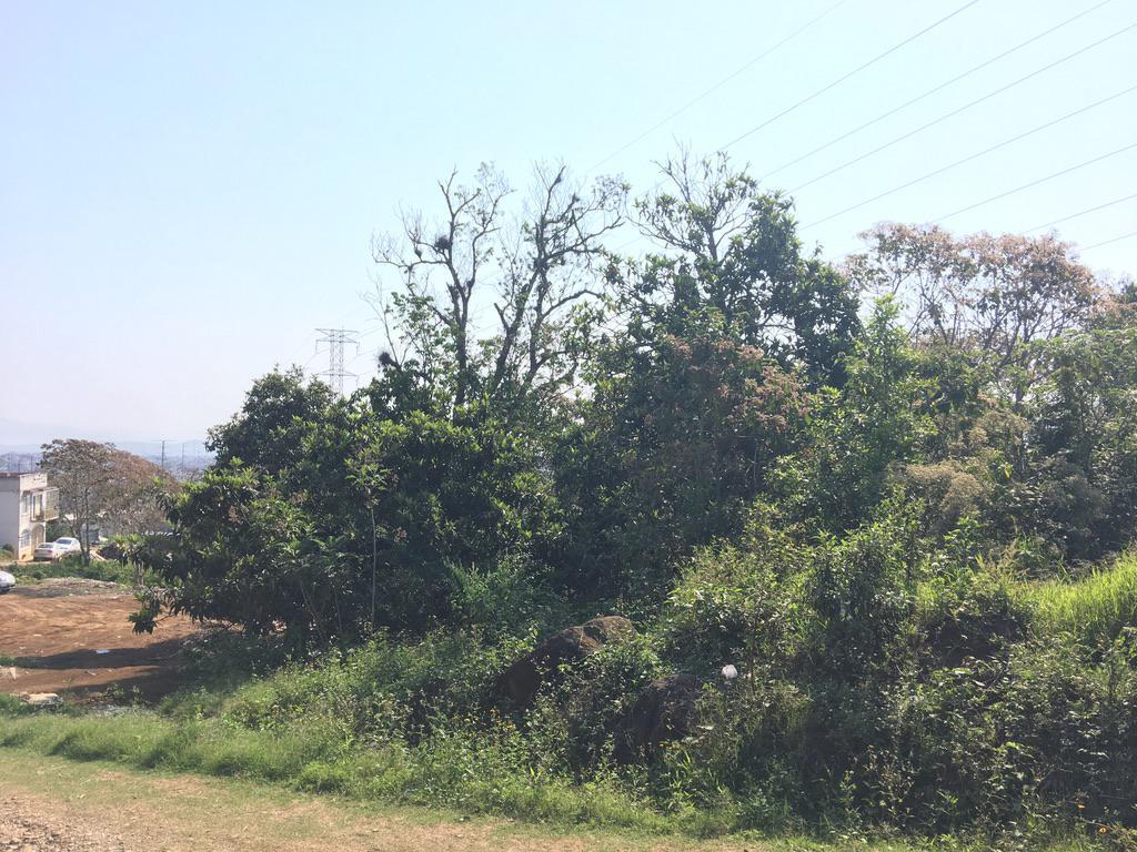 Foto Terreno en Venta |  en  Reserva Territorial,  Xalapa  TERRENO EN VENTA EN XALAPA, RESERVA Y FUENTES, 1,800 m2, FACTIBILIDAD DE SERVICIOS