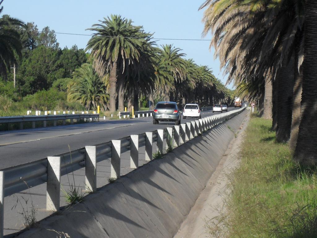 Foto Chacra en Venta en  Colonia del Sacramento ,  Colonia  Colonia del Sacramento