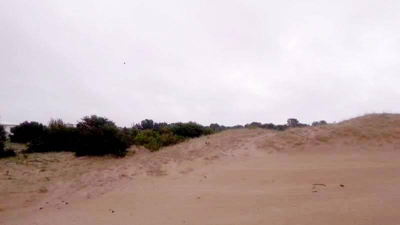 Foto Terreno en Venta en  Costa Esmeralda,  Punta Medanos  Senderos IV al 300
