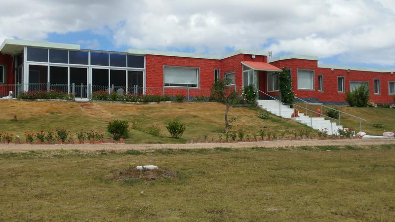 Foto Chacra en Venta en  San Carlos ,  Maldonado  Maldonado - Ruta 9 km 129,5