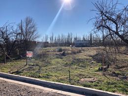 Foto Terreno en Venta en  Altos del Limay,  Capital  Gobernador Anaya 2600 - Barrio Parques de Talero