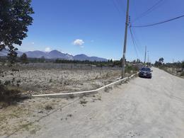 Foto Terreno en Venta en  Pedro Moncayo ,  Pichincha  Cantón Pedro Moncayo-Parroquía Malchinguí