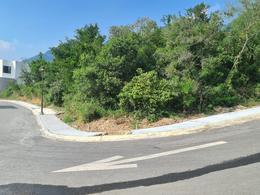 Foto Terreno en Venta en  Carretera Nacional,  Monterrey  TERRENO EN VENTA EN SANTA ISABEL ZONA CARRETERA NACIONAL MONTERREY
