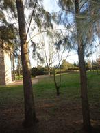 Foto Campo en Venta en  San Pedro,  San Pedro  ruta 191