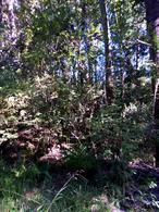 Foto Chacra en Venta en  Cerro Radal,  Lago Puelo  Lago Puelo