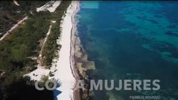 Foto Terreno en Venta en  Benito Juárez ,  Quintana Roo  TERRENO FRENTE AL MAR QUINTANA ROO