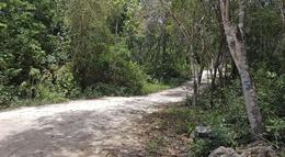 Foto Terreno en Venta en  Tulum Centro,  Tulum  Terreno en Fraccionamiento, Tulum por Cenote Dos Ojos