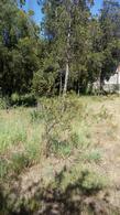 Foto Terreno en Venta en  Ruta 16,  Lago Puelo  Ruta 16, Lago Puelo
