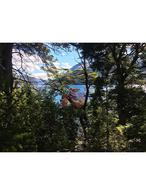 Foto Terreno en Venta en  Villa Lago Gutierrez,  San Carlos De Bariloche  Fracción con Costa de Lago - Ingreso por Huemul - Villa Lago Gutierrez