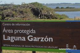 Foto Terreno en Venta en  Rocha ,  Rocha  Laguna Garzon