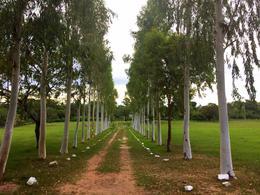 Foto Quinta en Alquiler temporario en  Emboscada,  Emboscada  Emboscada