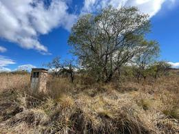 Foto Terreno en Venta en  Villa Carlos Paz,  Punilla  Oportunidad de Inversiòn se vende lote en TIERRA ALTA