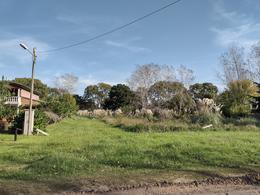 Foto Terreno en Venta en  Costa Del Este ,  Costa Atlantica  Av. 3 Entre los Malvones y Los Pensamientos