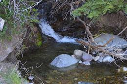 Foto thumbnail Campo en Venta en  Trevelin,  Futaleufu  Río Baguilt