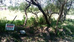 Foto Terreno en Venta en  Villa De Las Rosas,  San Javier  VENDO TERRENO CAMINO AL TRIGAL VILLA DE LAS ROSAS