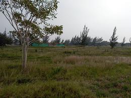 Foto Terreno en Venta en  Tampico Alto Centro,  Tampico Alto  Laguna de Tamiahua