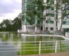 Foto Departamento en Renta en  Interlomas,  Huixquilucan  SKG Asesores Inmobiliarios Rentan Departamento en Isla de Agua, Interlomas
