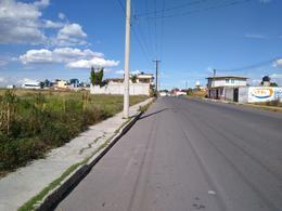 Foto Terreno en Venta en  Pueblo La Magdalena Tlaltelulco,  La Magdalena Tlaltelulco  TERRENO EN VENTA, SANTA CRUZ TETELA, LA MAGDALENA TLAXCALA
