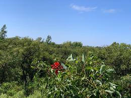 Foto Terreno en Venta en  Tres Sargentos,  Zona Delta Tigre  LOTE VENTA Desarrollo Ecológico Dos Ríos - Delta Tigre