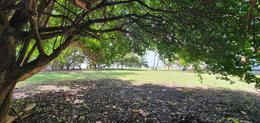 Foto Terreno en Venta en  Chetumal ,  Quintana Roo  TERRENO  EN LA BAHIA DE CHETUMAL