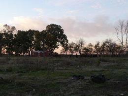 Foto Campo en Venta en  Lobos,  Lobos  310 Ha. Lobos
