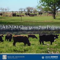 Foto Campo en Venta en  Gobernador Castro,  San Pedro  callejon guzzo 1500