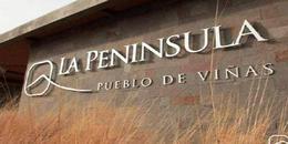 Foto Terreno en Venta en  Capital ,  Neuquen  La Peninsula 1