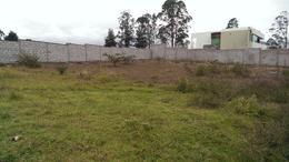 Foto Terreno en Venta en  Puembo,  Quito  Hermoso terreno de 2520 metros en Puembo (116 m2) (PR)