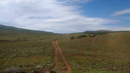 Foto Campo en Venta en  Cholila,  Cushamen  Ruta Provincial 15, Cholila
