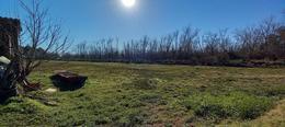 Foto Terreno en Venta en  Torito,  Zona Delta Tigre  Ar. Torito Parcela 7 G
