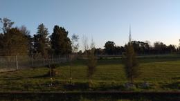 Foto Quinta en Venta en  Lisandro Olmos Etcheverry,  La Plata  ETCHEVERRY