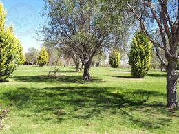 Foto Terreno en Venta en  Rancho o rancheria Salto de los Salados,  Aguascalientes  M&C VENTA D E TERRENOS EN EDEN LOS SABINOS