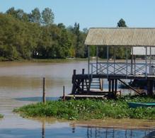 Foto Chacra en Venta en  Villa Paranacito,  Islas Del Ibicuy  Rio Paranacito s/n