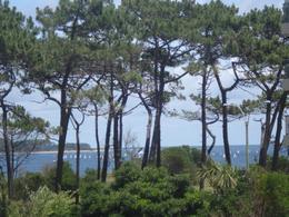 Foto Departamento en Alquiler temporario | Venta en  Playa Mansa,  Punta del Este  Playa Mansa, parada 7