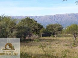 Foto Terreno en Venta en  San Fco Del Monte De Oro,  Ayacucho      San Fco del Monte de Oro Lote  1917  m2