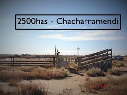 Foto Campo en Venta en  Chacharramendi,  Utracan  Chacharramendi