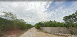 Foto Terreno en Venta en  Progreso ,  Yucatán  20 HECTAREAS A LA VENTA, EN CARR . PROGRESO
