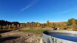 Foto Terreno en Venta en  Bariloche ,  Rio Negro  Bo. Las Chacras