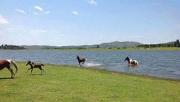 Foto Terreno en Venta en  Villa Ciudad De America,  Santa Maria  Lago Los Molinos Lote 39C Valle Azul Country Club