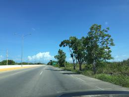 Foto Terreno en Venta en  Progreso de Castro Centro,  Progreso  Terrenos De 2.6  hasta 9.4 Hectáreas en Carretera Mérida-Progreso