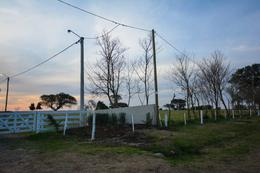Foto Terreno en Venta en  San Pedro,  San Pedro  Alvear 2400