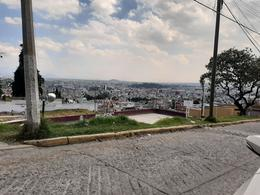 Foto Terreno en Venta en  La Teresona,  Toluca  TOLUCA
