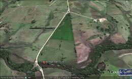 Foto Campo en Venta en  Tarariras ,  Colonia  Tarariras