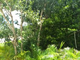 Foto Terreno en Venta en  Lagos del Sol,  Cancún  Vendo Lote Residencial Lagos del Sol Cancun, 620 M2, Financiamos, Segu