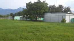 Foto Nave Industrial en Renta en  Palmira,  La Ceiba  Propiedad Industrial en Renta en La Ceiba