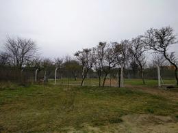 Foto Terreno en Venta en  Villa Los Aromos,  Santa Maria  Terrenos Zona vivero  - Villa los Aromos